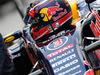 GP ABU DHABI, 29.11.2015 - Daniel Ricciardo (AUS) Red Bull Racing RB11