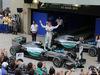 GP BRASILE, 15.11.2015 - Gara, Nico Rosberg (GER) Mercedes AMG F1 W06 vincitore