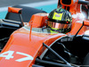 TEST F1 ABU DHABI 29 NOVEMBRE, Lando Norris (GBR) McLaren Honda  29.11.2017.