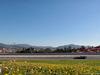 TEST F1 BARCELLONA 1 MARZO, Carlos Sainz Jr (ESP) Scuderia Toro Rosso STR12. 01.03.2017.
