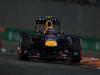 GP ABU DHABI, 03.11.2013- Gara, Mark Webber (AUS) Red Bull Racing RB9