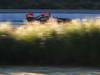 JEREZ TEST FEBBRAIO 2013, Kimi Raikkonen (FIN) Lotus F1 E21. 08.02.2013.