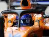 GP BRASILE, 10.11.2018 - Free Practice 3, Fernando Alonso (ESP) McLaren MCL33