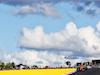 GP PORTOGALLO, Carlos Sainz Jr (ESP) McLaren MCL35. 23.10.2020. Formula 1 World Championship, Rd 12, Portuguese Grand Prix, Portimao, Portugal, Practice Day. - www.xpbimages.com, EMail: requests@xpbimages.com © Copyright: Batchelor / XPB Images