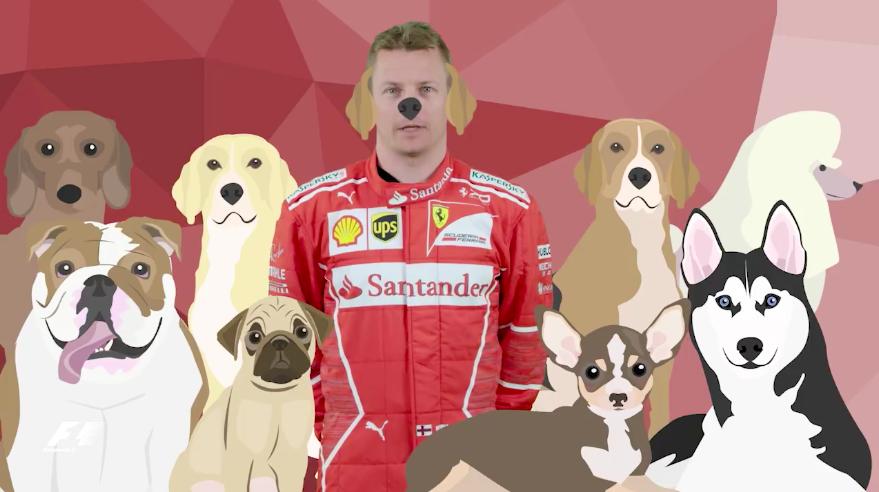 F1   Quali sono gli animali preferiti dei piloti? Il nuovo gioco della Formula 1 (VIDEO)